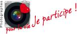 logo PPLV
